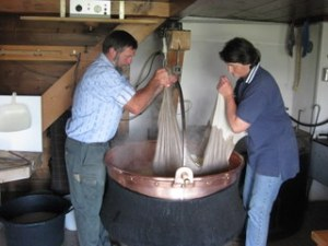Ernst and Margrit Kübli lifting the curds from the vat, by Sue Style
