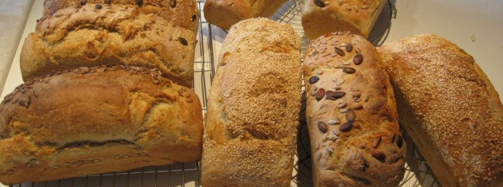 cropped-breads-various.jpg