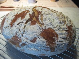 Sue Style's no-knead bread