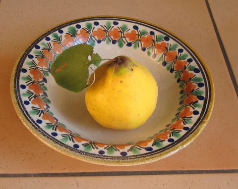 Sue Style's quince on a plate