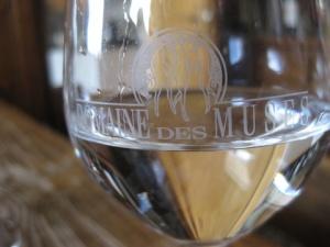 Dom des Muses glass-001