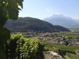 Swiss Wine Week 2015