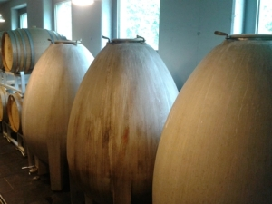 Concrete eggs for fermenting white wine