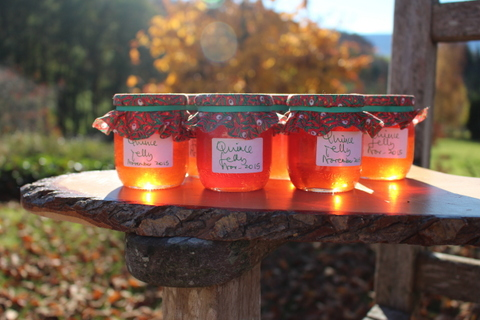 Shimmer my Jelly – The Forgotten Pleasures ofQuince