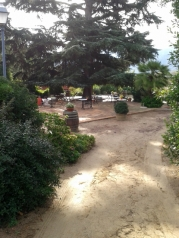 Under the cedar tree outside Mas Figueres, photo Sue Style