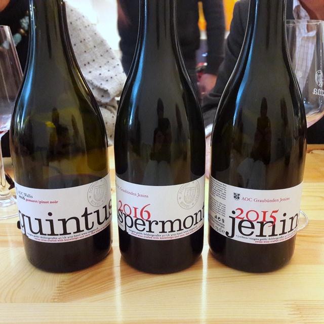 Vinigma Basel – an Unusual WineryModel