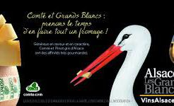 storks-and-comte